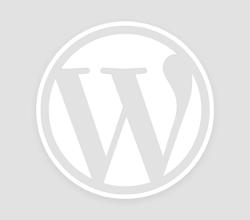 জাহিলিয়্যাতের সকল চ্যালেঞ্জ মোকাবেলায় দায়িত্বশীলদের কুরআন হাদীসের পাশাপাশি যুগপযোগি জ্ঞান অর্জন করতে হবে